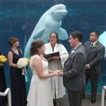 Wedding party with beluga whale at Mystic Aquarium